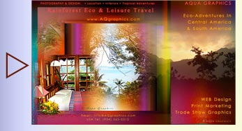 Creative Designer for Rainforest Jungle ECO Lodge ..Internet Marketing Services and Print Advertising.