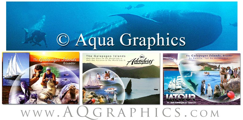 Underwater Design for Websites and Print.