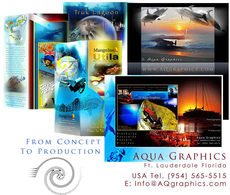 Dive Travel Brochure Design Services